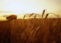 Стережись біди на сільгоспвиробництві