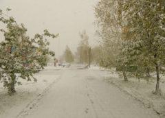 Жителей Украины предупредили об ухудшении погоды 18 января