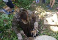 У Роздільнянському районі врятували двох тварин (+відео)
