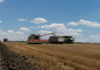 Хід збирання ранніх зернових культур на Роздільнянщині