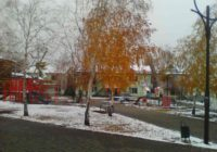 Фото дня: у Роздільній осінь зустрілась з зимою