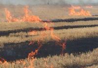 У селах Роздільнянського району рятувальники ліквідували пожежі сухої трави