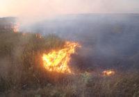 На Одещині й надалі збережеться надзвичайна пожежна небезпека (5 класу)