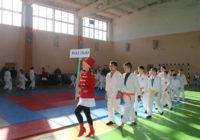 У Роздільній стартувала Відкрита першість Одеської області з дзюдо пам'яті Сергія Іщенка