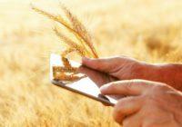 Більше трьох сотень агровиробників внесли свої дані в Аграрний реєстр