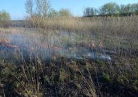 У с. Кам'янкарятувальники ліквідували пожежусухої трави, а у м. Роздільна загорання господарчої будівлі
