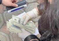 $60 тис. за призначення в Міноборони: військова контррозвідка CБУ затримала зловмисницю