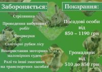"""З 1 квітня й до 15 червня в усіх українських лісах оголошено """"сезон тиші"""""""