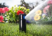 Современные технологии в уходе за растениями